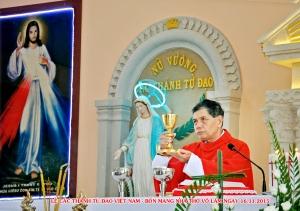 Lễ Kính Các Thánh Tử Đạo VN. Bổn mạng GX Võ Lâm 15.11.2015
